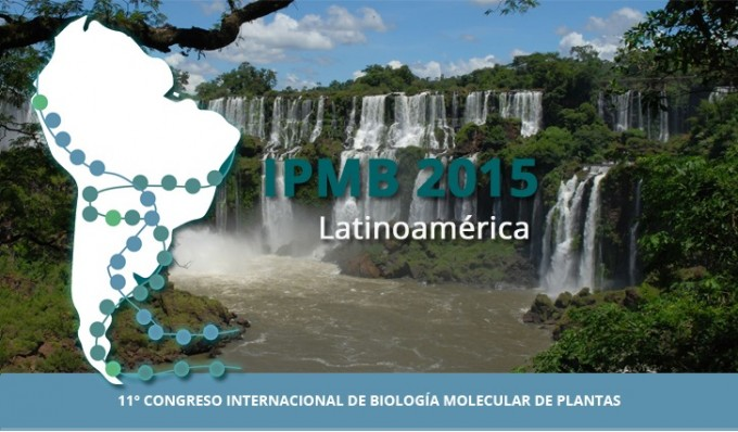 banner_ipmb2015-modificado