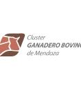 cluster_bovino_mendoza
