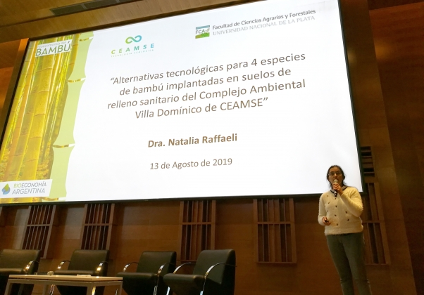 Natalia Raffaeli – UNLP